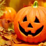 「かぼちゃの馬車」問題で考える 〜甘い言葉の罠に騙されない最低限の知識〜